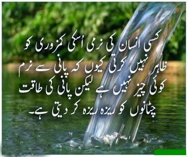 top 10 islamic quotes in urdu   aqwal e zareen   islamghar